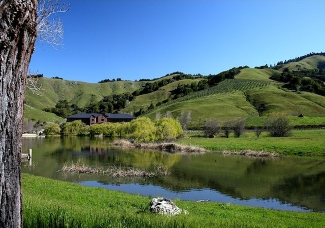 Skywalker-Ranch-2-590x416jpg-590x416